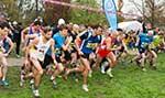 waldstraesser-crosslauf-2014